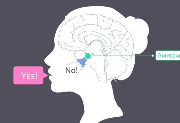 هنگام دروغ گفتن چه اتفاقی در مغز رخ میدهد