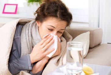 این خوراکیها باعث بدتر شدن سرماخوردگی میشوند
