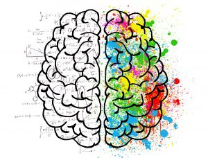 فعالیت نمیکره های مغز