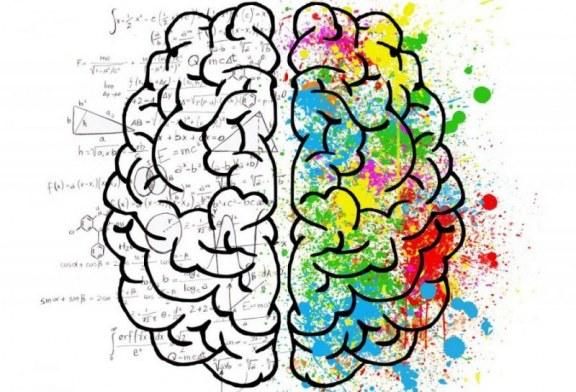 میزان فعالیت نمیکره های مغز خود را اندازه بگیرید!