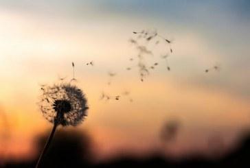 چگونه با گذشته خود صلح کنیم؟