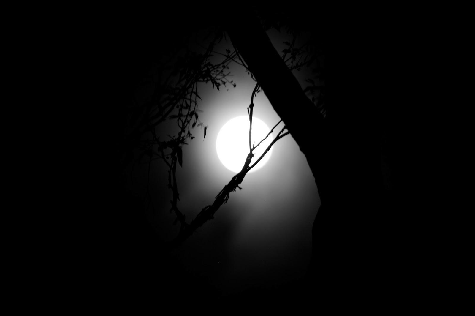 دلیل ترس از تاریکی چیست
