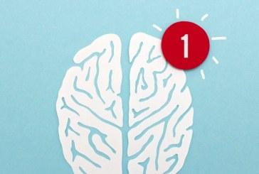 مغز یک فرد حرفه ای با مغز یک تازه کار تفاوت دارد