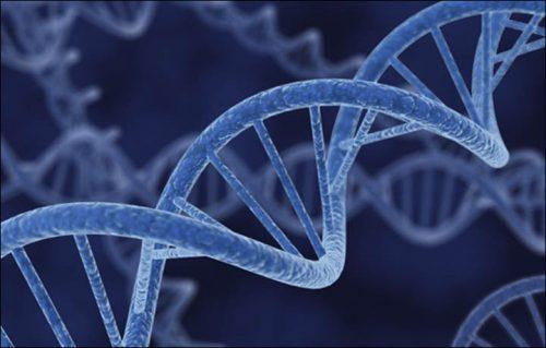 ژن مرتبط با افسردگی